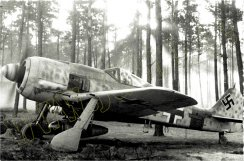 Fw190A-rote1.jpg